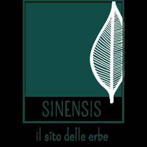 Sinensis Logo